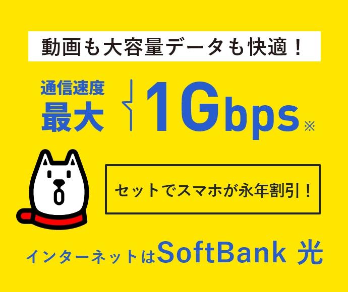 通信速度 最大1Gbps